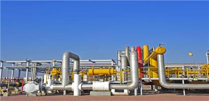 South Korea's Kogas Jun LNG sales suffer biggest decline in